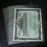 Supersafe 1-Pocket Polypropylene Pages (10)