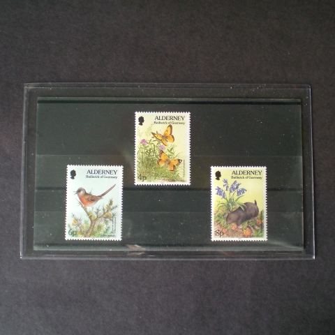 Heavyweight Approval Card Holders (10)